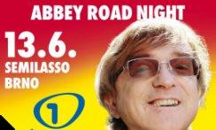 MIRO ŽBIRKA - ABBEY ROAD NIGHT