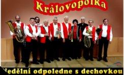 Královopolka 2015 od 15:00