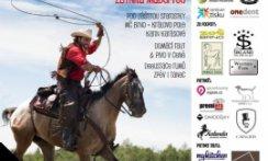 Benefiční galavečer Propomoc z.s. na podporu koní se koná pod záštitou starostky MČ Královo Pole paní Karin Karásové a za podpory ZOO Brno, westernového městečka Boskovice a zábavního areálu Šikland.